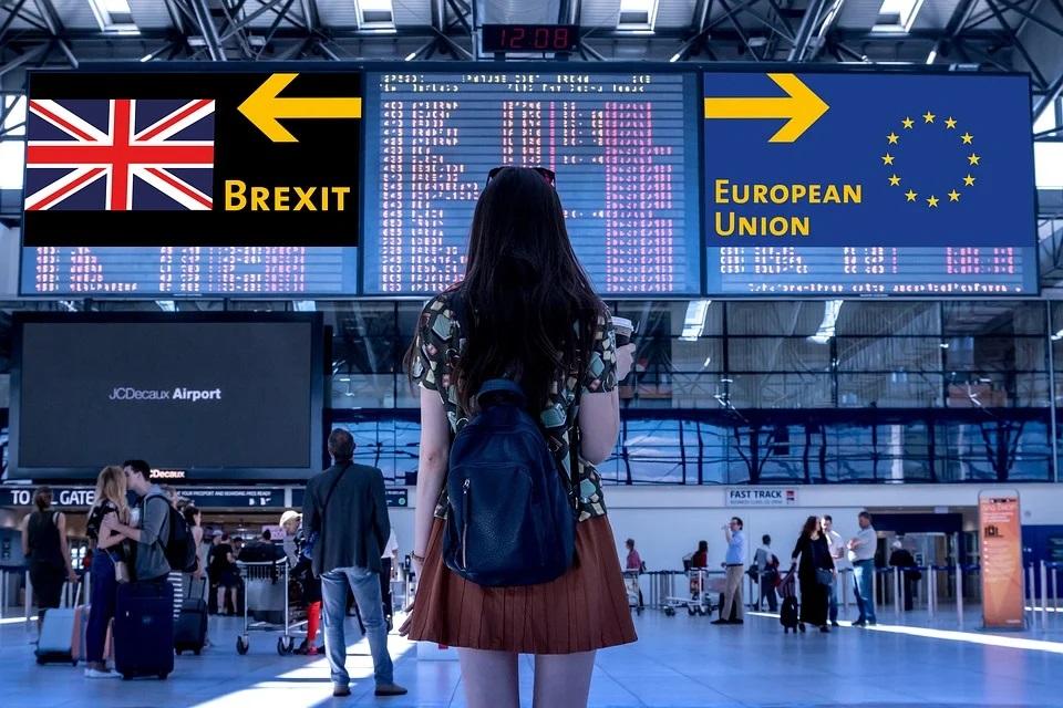 Przemieszczanie zwierząt domowych z Wielkiej Brytanii do Unii Europejskiej