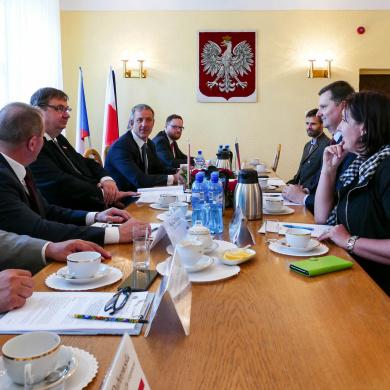 Robocze spotkanie polsko-czeskiej grupy roboczej w sprawie ASF