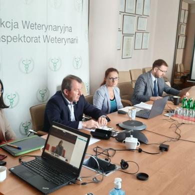 Zdalny audyt KE w Polsce