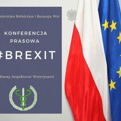 Brexit - konferencja prasowa MRiRW